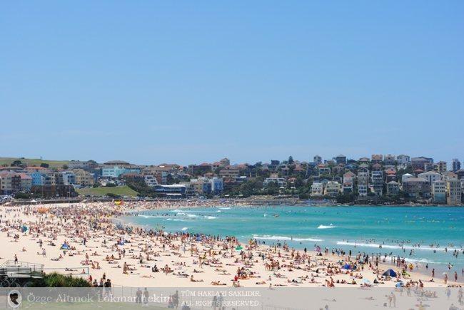 Bondi Beach'te Bir Pazar Sabahı - Sidney 1