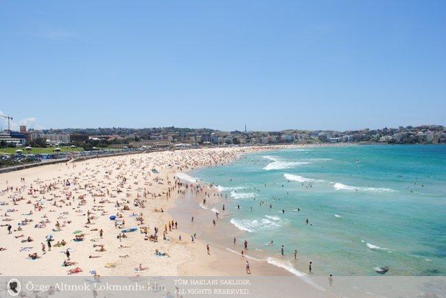 Bondi Beach'te Bir Pazar Sabahı - Sidney 2