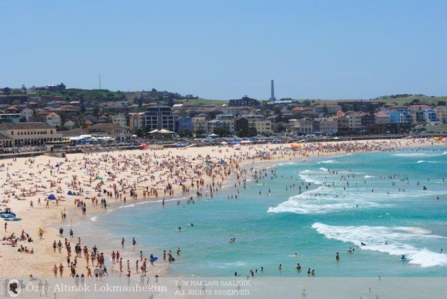 Bondi Beach'te Bir Pazar Sabahı - Sidney 3