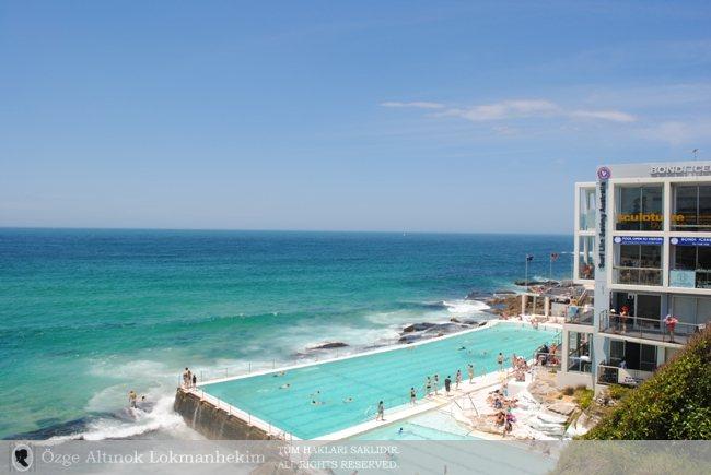 Bondi Beach'te Bir Pazar Sabahı - Sidney 4