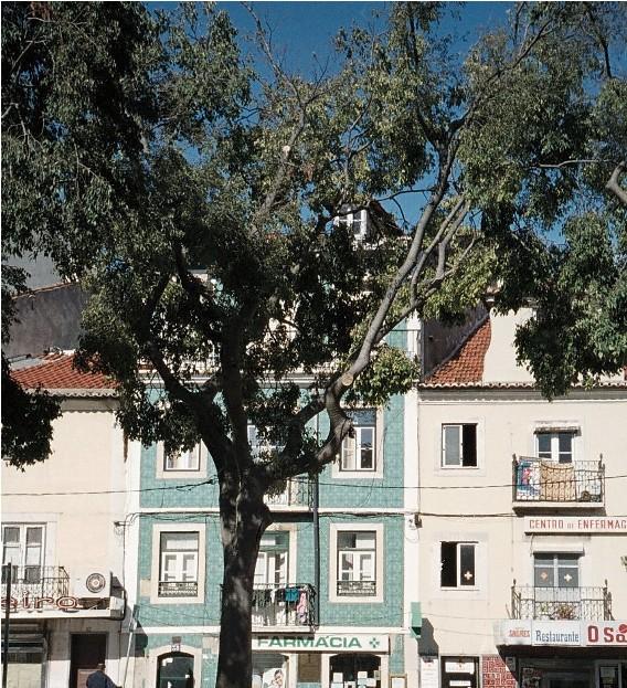 Avrupa'nın en renkli şehri: Lizbon 1