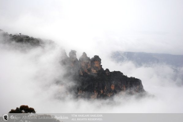 Blue Mountains National Park 2