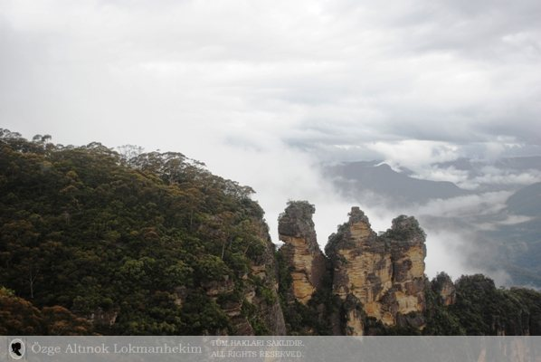 Blue Mountains National Park 3