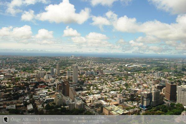 Sydney Tower 1