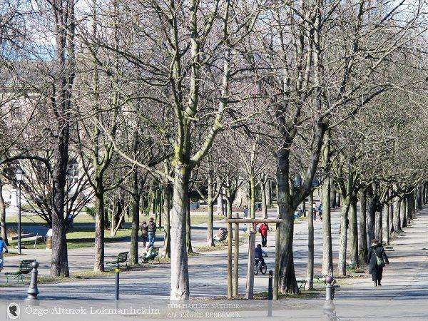 Cenevre Üniversitesi'nin parkı Bastions Park 1