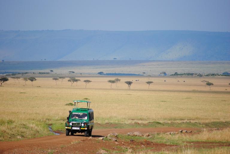 JAMBO KENYA ! Masai Mara'da Safari 19