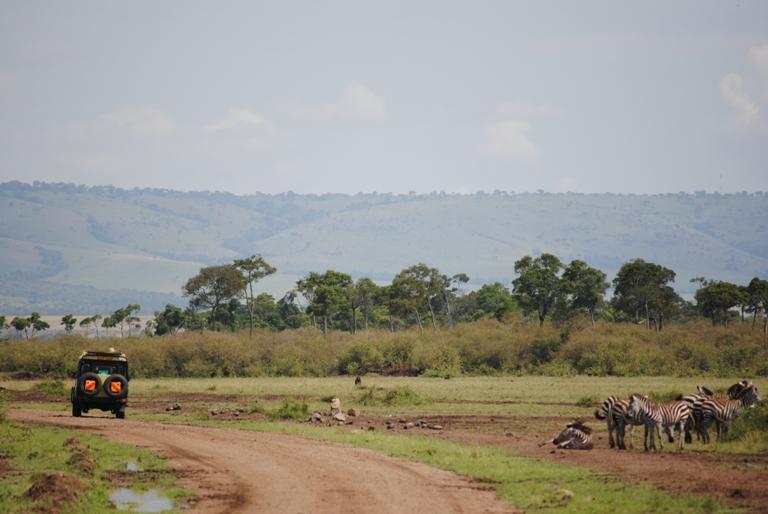 JAMBO KENYA ! Masai Mara'da Safari 26